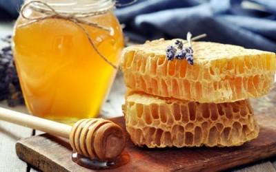 Kleine Honigkunde